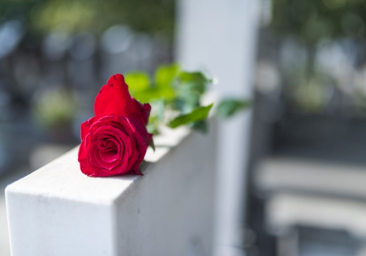 Red rose on the tombstone. Rose in a cemetery with headstone. Red rose flower on a grave in a cemetery. Flower at a funeral. Tragedy and sorrow for the loss of a loved one.